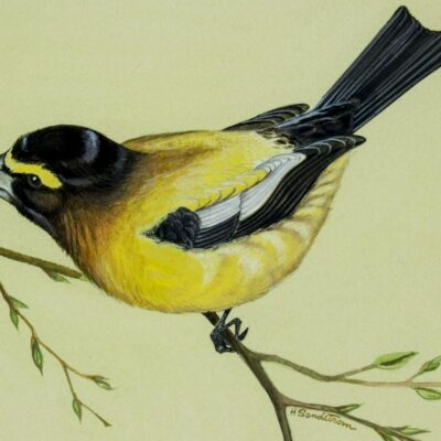 Harvey Sandstrom (MN,1925-2013) gouache painting